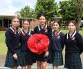Remembrance Day : Image 2