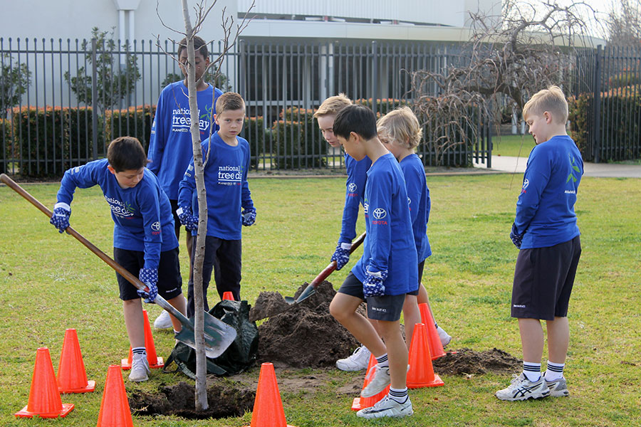 Tree Planting Day : Image 3