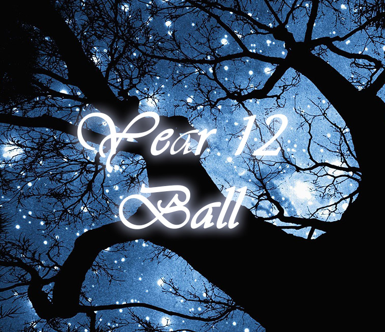 Year 12 Ball 2018 : Image 1