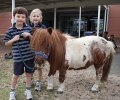 Peaches the pony visits Year 1 : Image 1