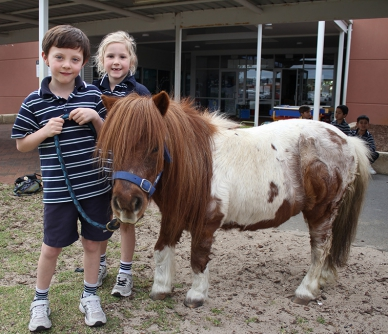 Peaches the pony visits Year 1
